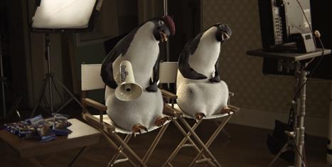 Pingüinos Marinela